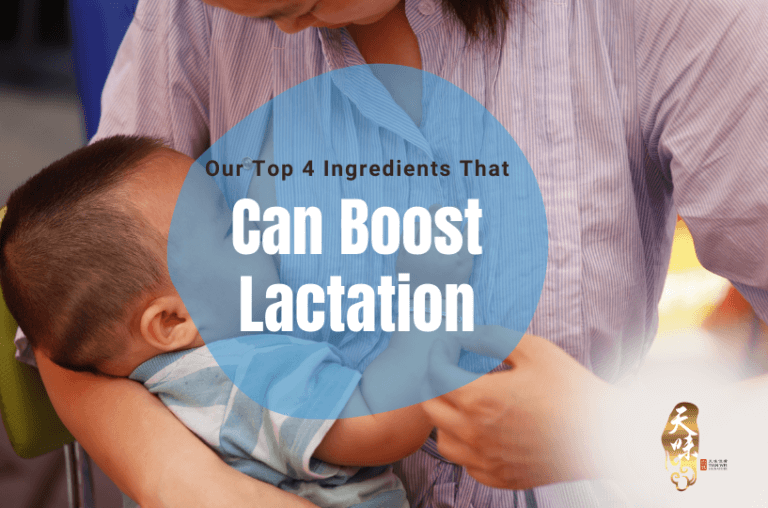 Our Top 4 Ingredients That Can Boost Lactation
